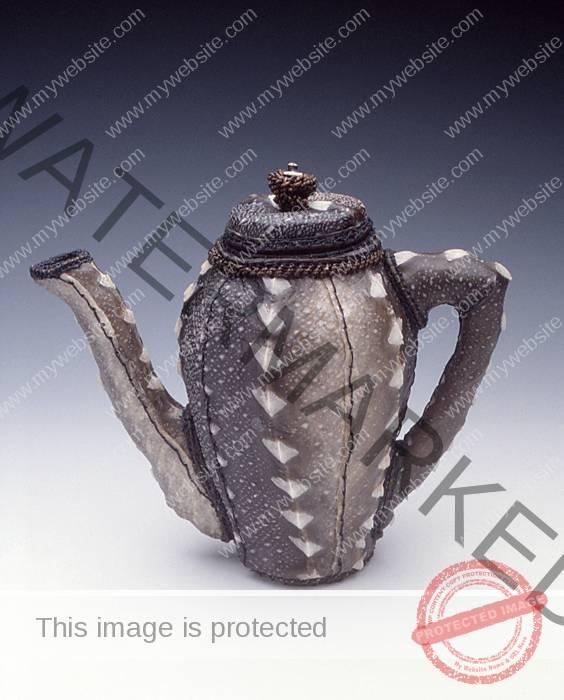 Jan Hopkins General Sturgeon's Teapot