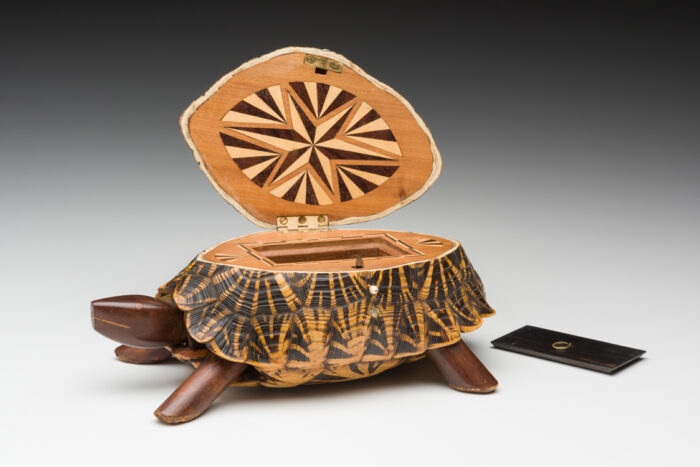 Tortoise tea caddy